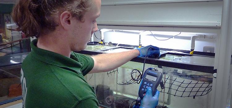 London Zoo employee using a Palintest water testing kit