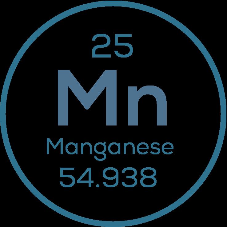 Manganese Testing icon